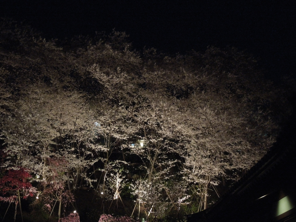 f:id:Ikegamiblog_tokyo:20170411230026j:plain