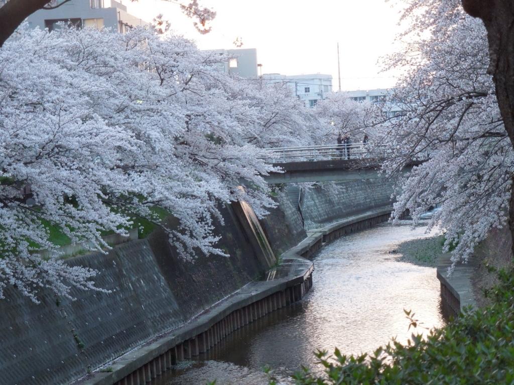 f:id:Ikegamiblog_tokyo:20170415204053j:plain