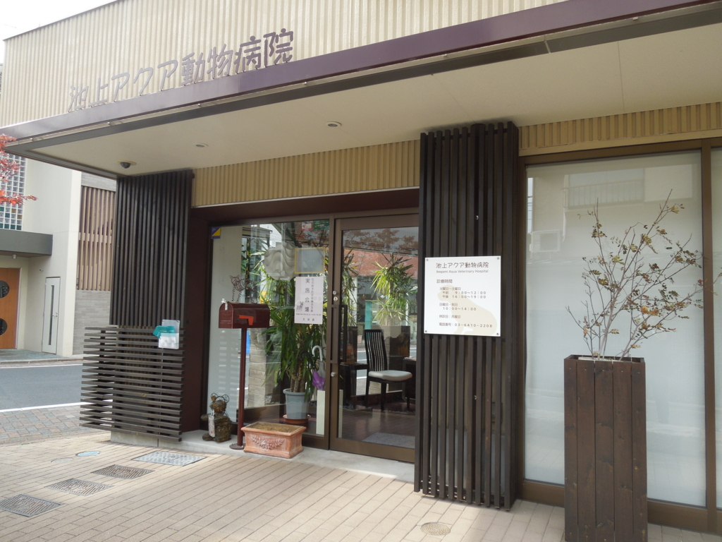 f:id:Ikegamiblog_tokyo:20170426223204j:plain