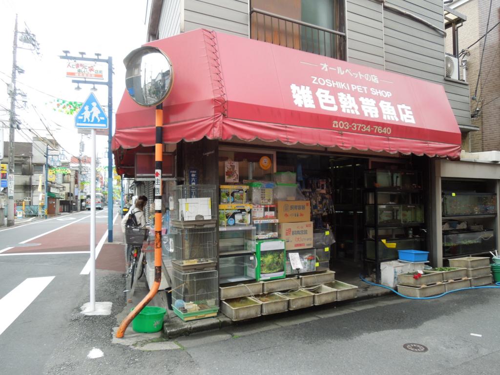 f:id:Ikegamiblog_tokyo:20170514221400j:plain