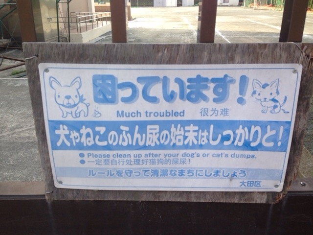 f:id:Ikegamiblog_tokyo:20170522075241j:plain