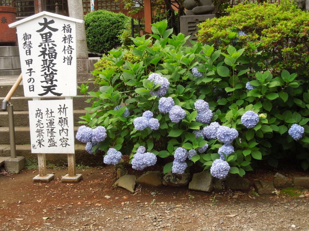 f:id:Ikegamiblog_tokyo:20170607214910j:plain