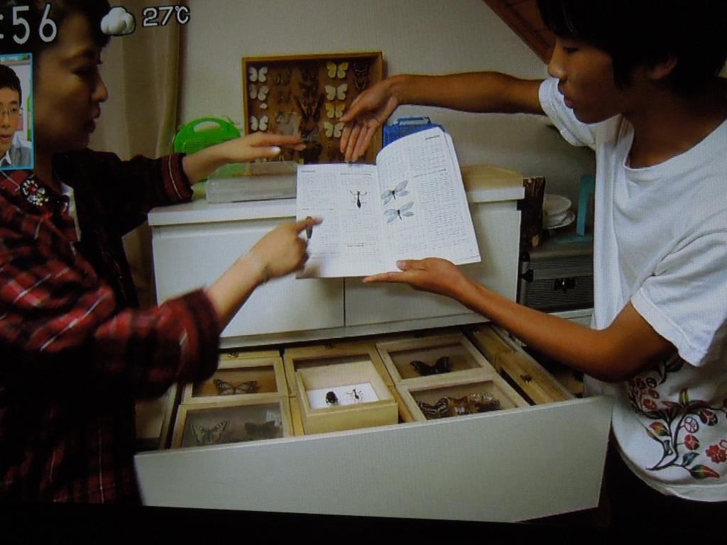 f:id:Ikegamiblog_tokyo:20170730210855j:plain
