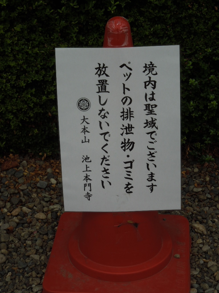 f:id:Ikegamiblog_tokyo:20170730211502j:plain