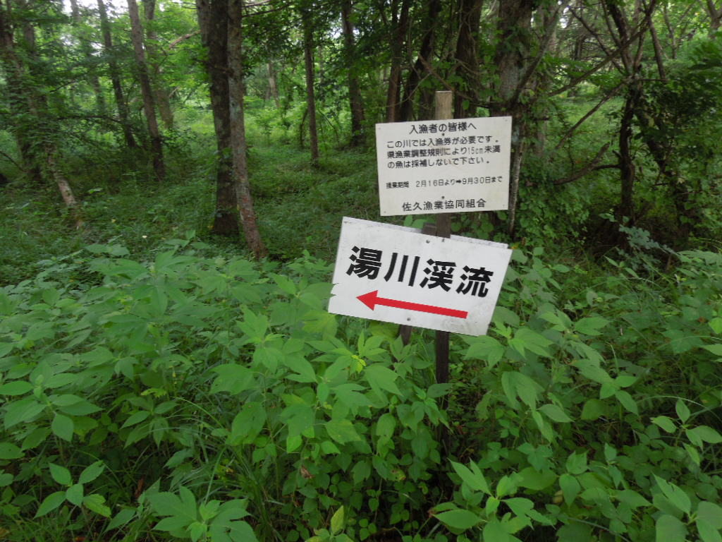 f:id:Ikegamiblog_tokyo:20170807223048j:plain