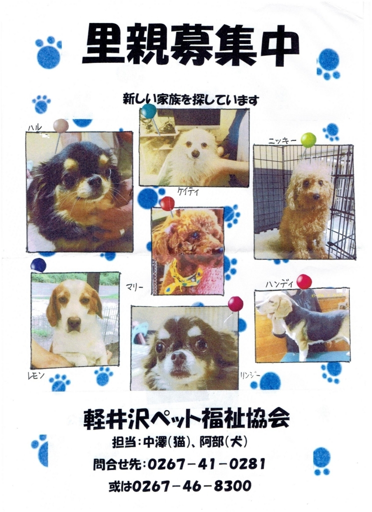 f:id:Ikegamiblog_tokyo:20170813152532j:plain