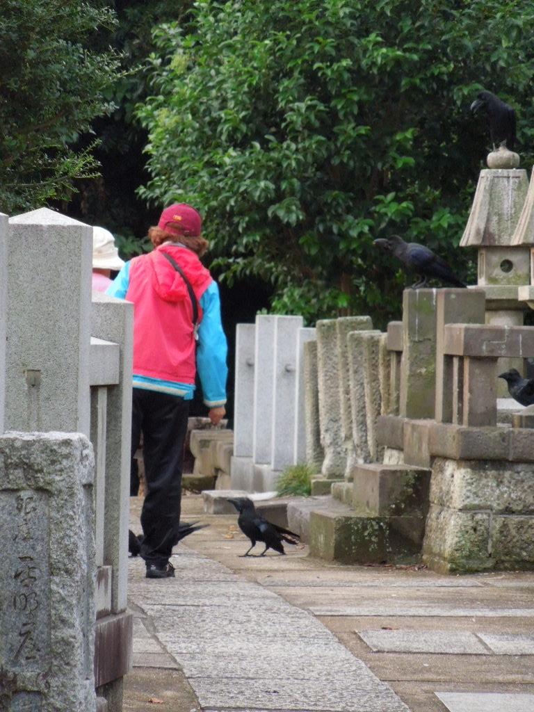 f:id:Ikegamiblog_tokyo:20171004213756j:plain