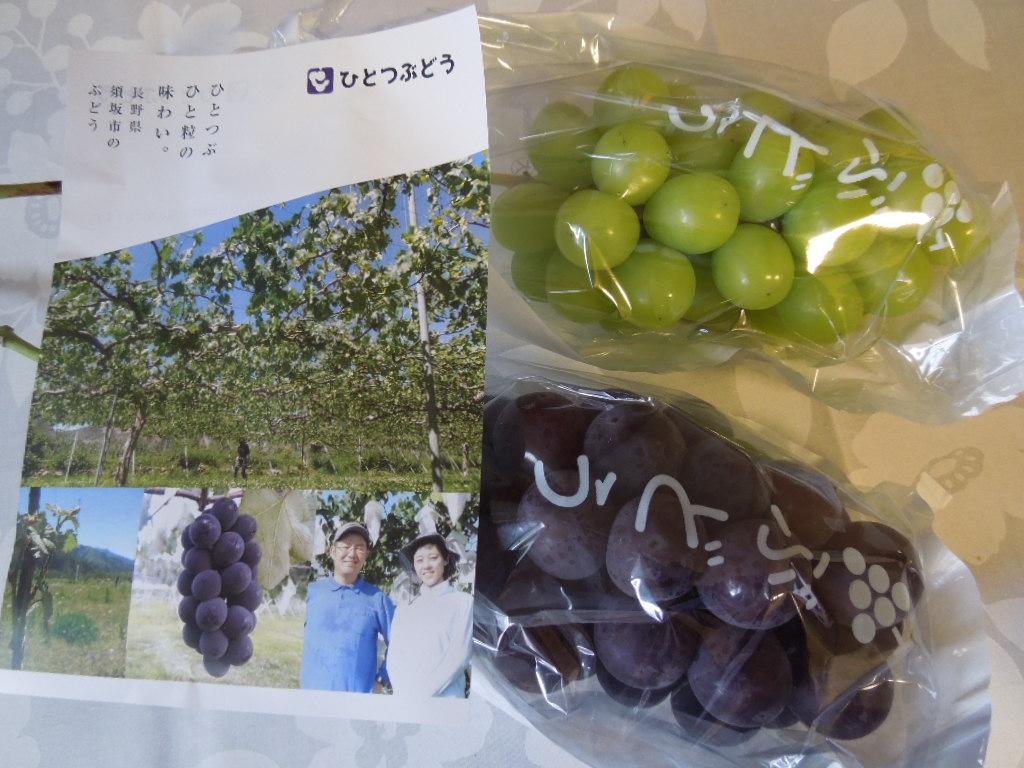 f:id:Ikegamiblog_tokyo:20171016220952j:plain
