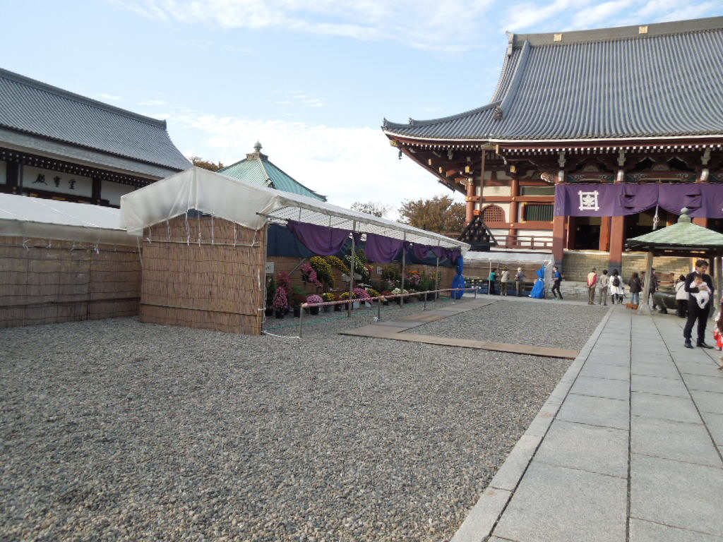 f:id:Ikegamiblog_tokyo:20171110213330j:plain