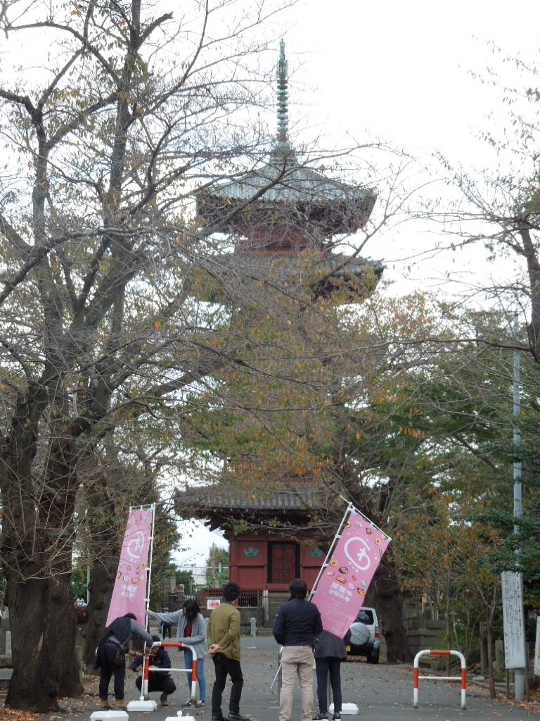 f:id:Ikegamiblog_tokyo:20171111124542j:plain