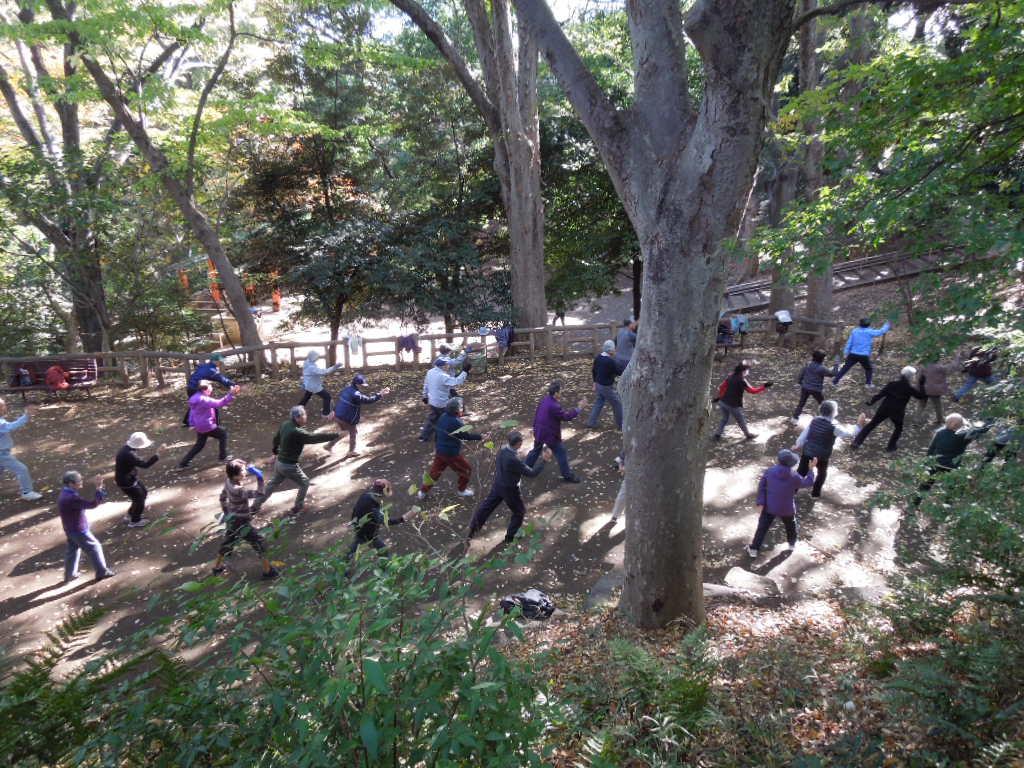 f:id:Ikegamiblog_tokyo:20171114224445j:plain