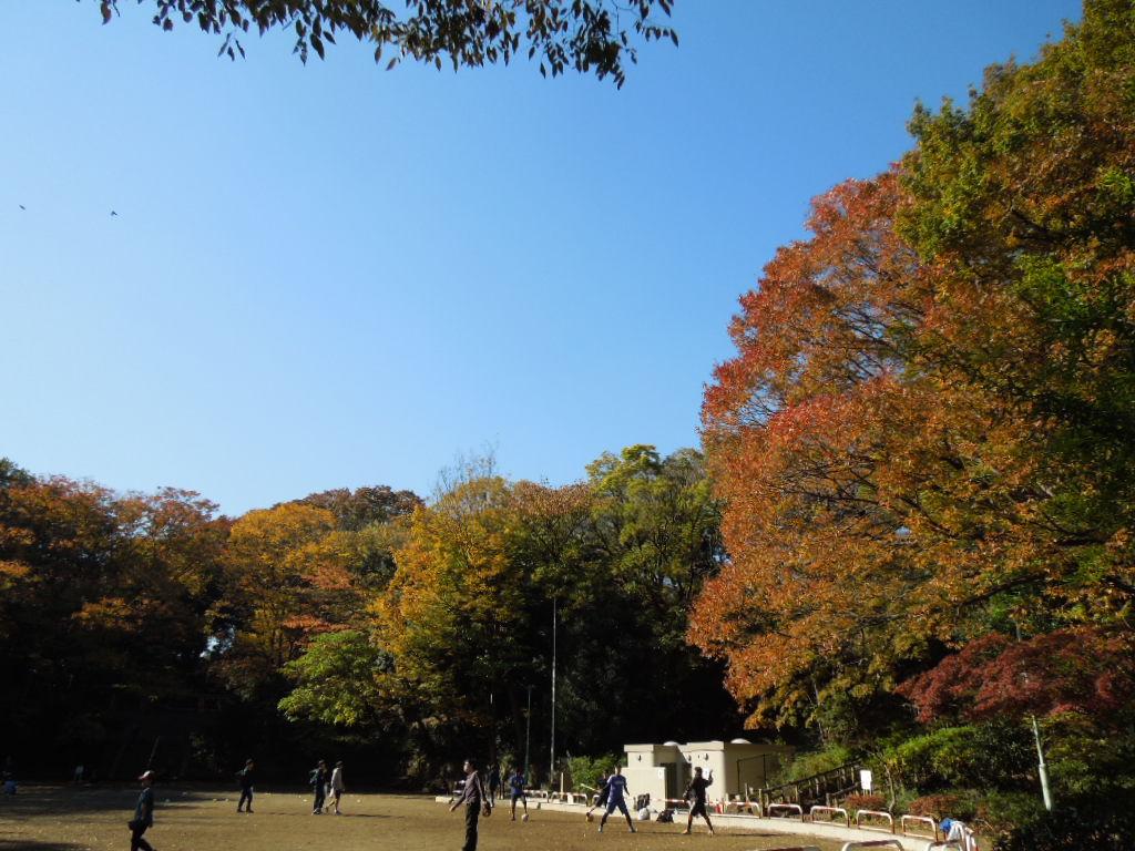 f:id:Ikegamiblog_tokyo:20171126225829j:plain