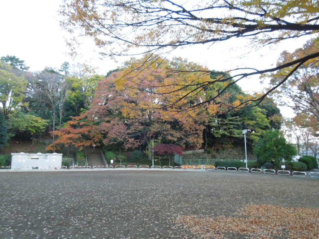 f:id:Ikegamiblog_tokyo:20171127211530j:plain