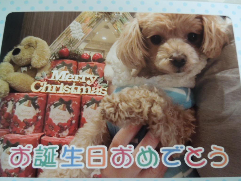 f:id:Ikegamiblog_tokyo:20171217225418j:plain