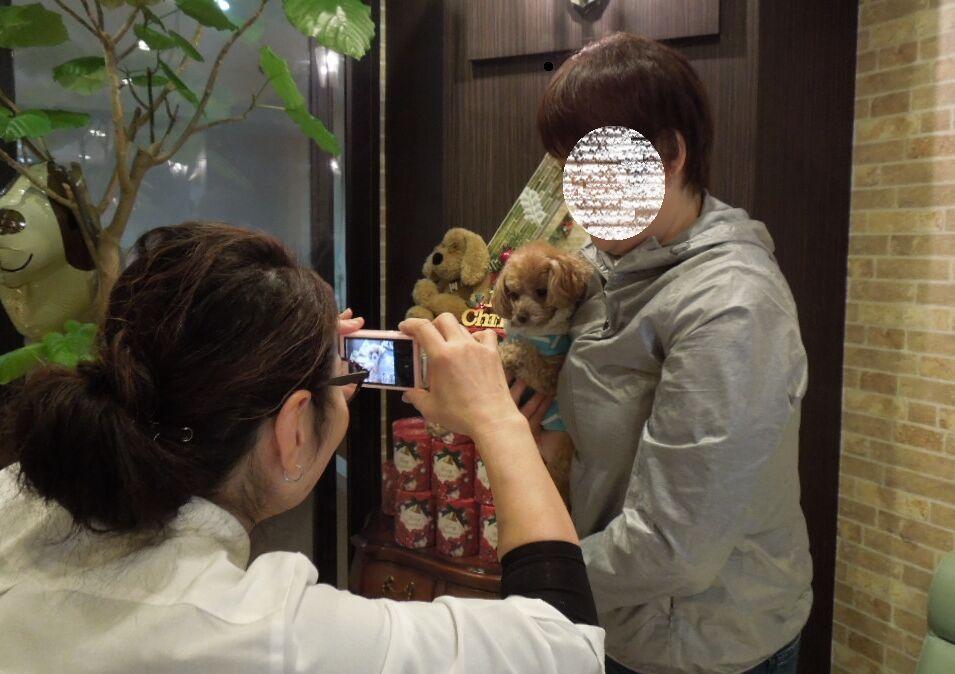 f:id:Ikegamiblog_tokyo:20171217225729j:plain