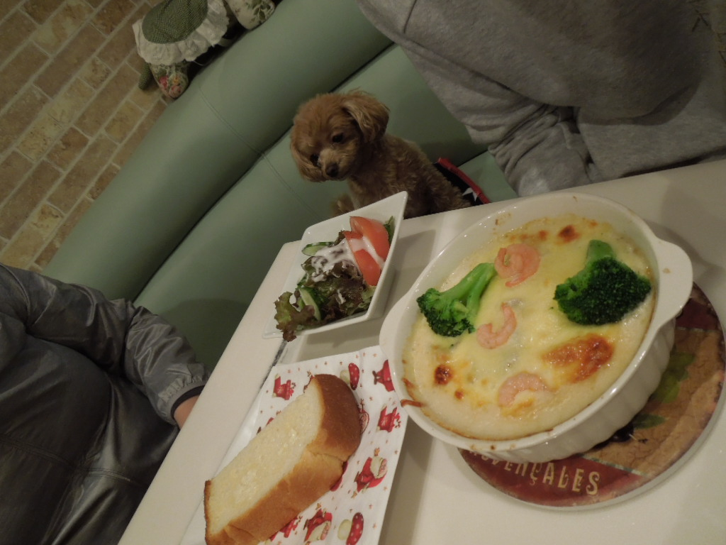 f:id:Ikegamiblog_tokyo:20171217230233j:plain