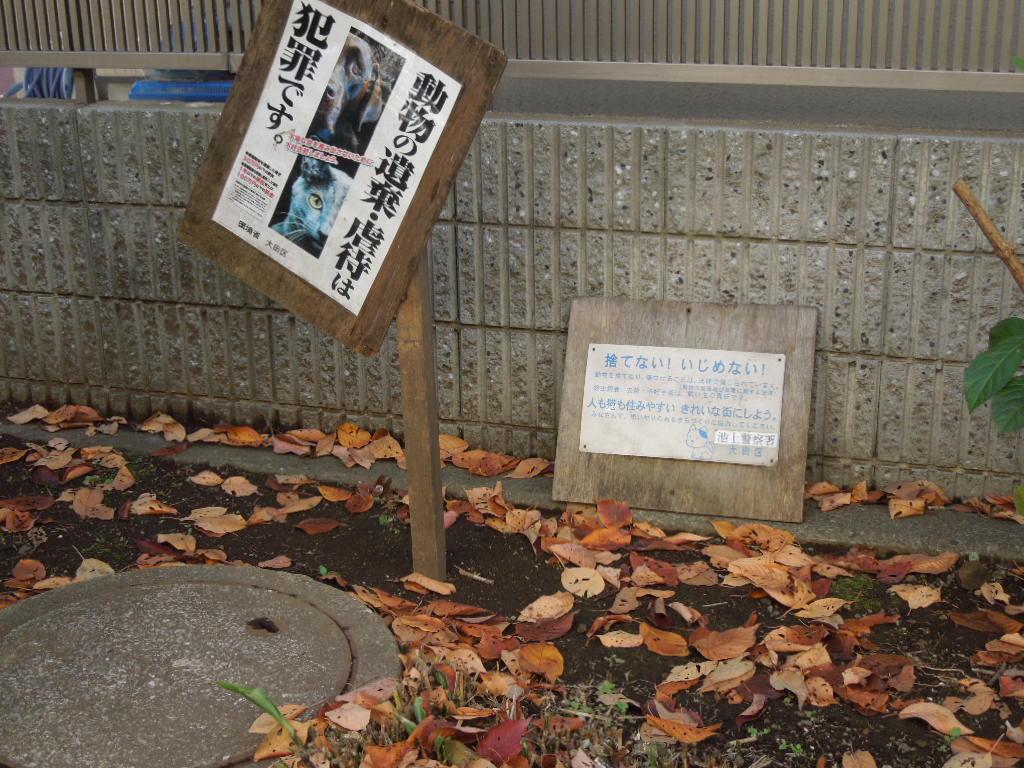 f:id:Ikegamiblog_tokyo:20171218223106j:plain