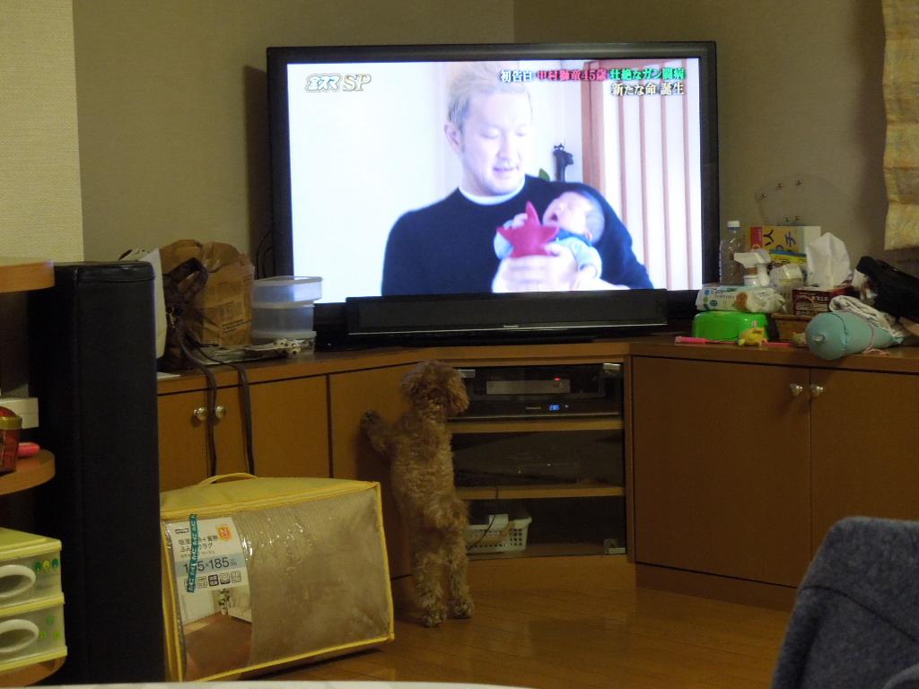 f:id:Ikegamiblog_tokyo:20180107170913j:plain