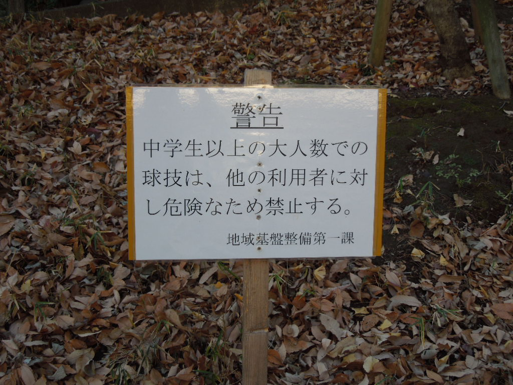 f:id:Ikegamiblog_tokyo:20180107234302j:plain