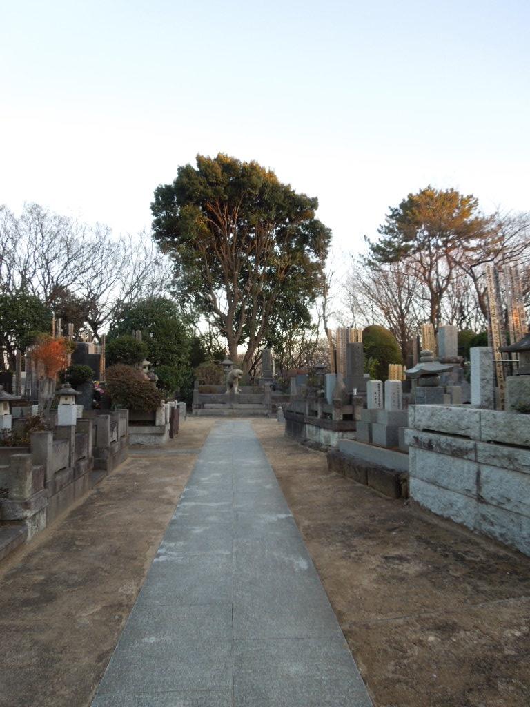 f:id:Ikegamiblog_tokyo:20180115190650j:plain