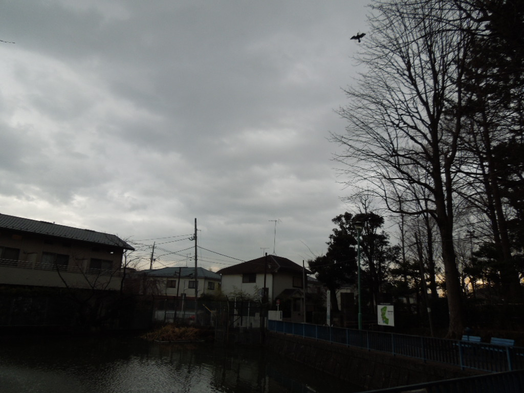 f:id:Ikegamiblog_tokyo:20180117203603j:plain