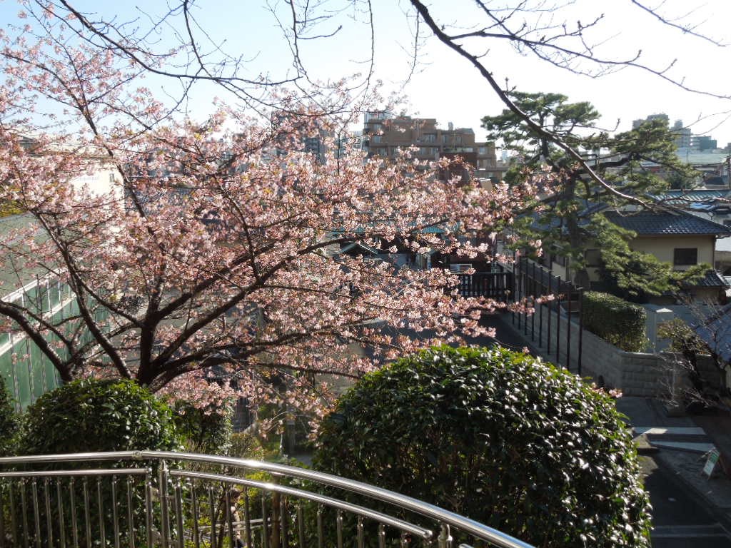 f:id:Ikegamiblog_tokyo:20180212164450j:plain