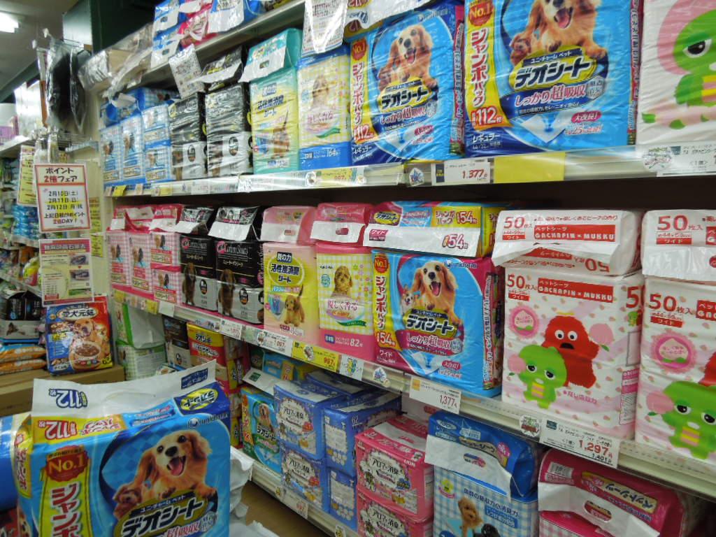 f:id:Ikegamiblog_tokyo:20180212214419j:plain