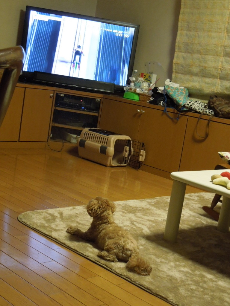 f:id:Ikegamiblog_tokyo:20180218115137j:plain