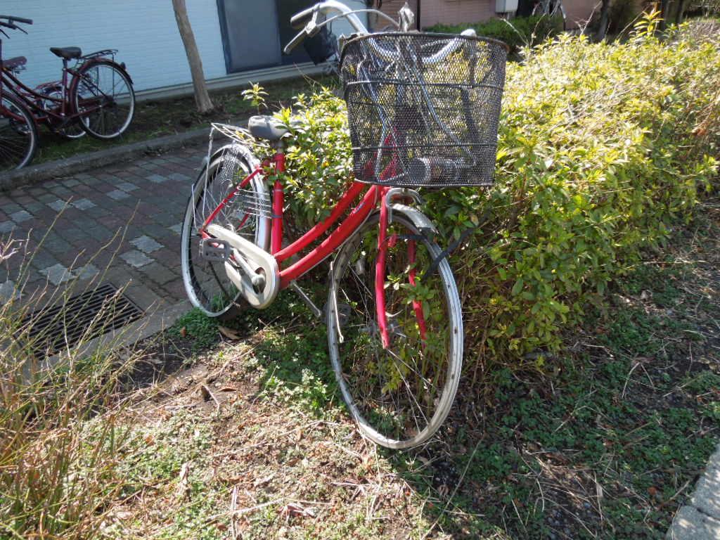 f:id:Ikegamiblog_tokyo:20180308135547j:plain