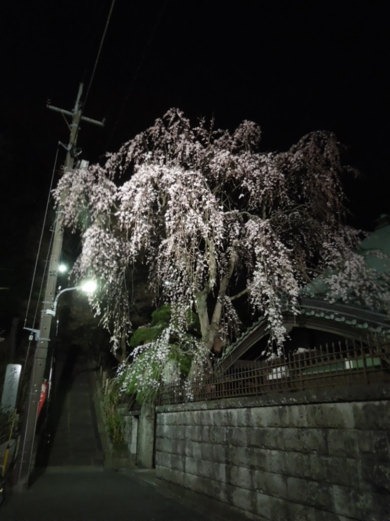 f:id:Ikegamiblog_tokyo:20180317210932j:plain