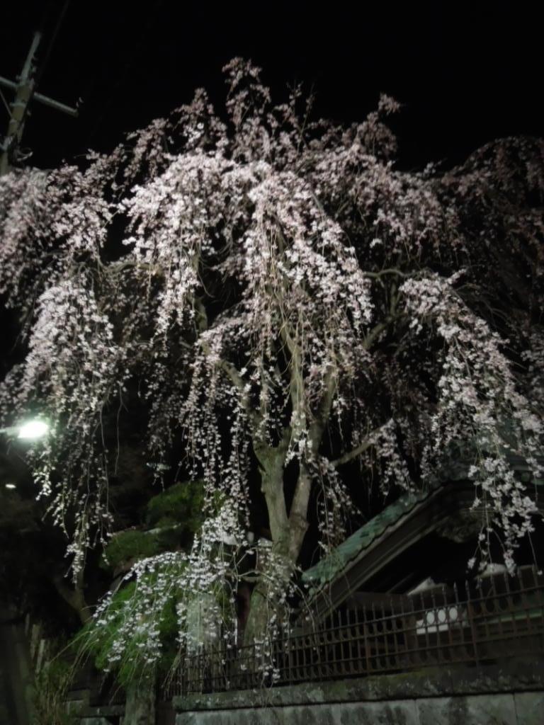 f:id:Ikegamiblog_tokyo:20180317210953j:plain