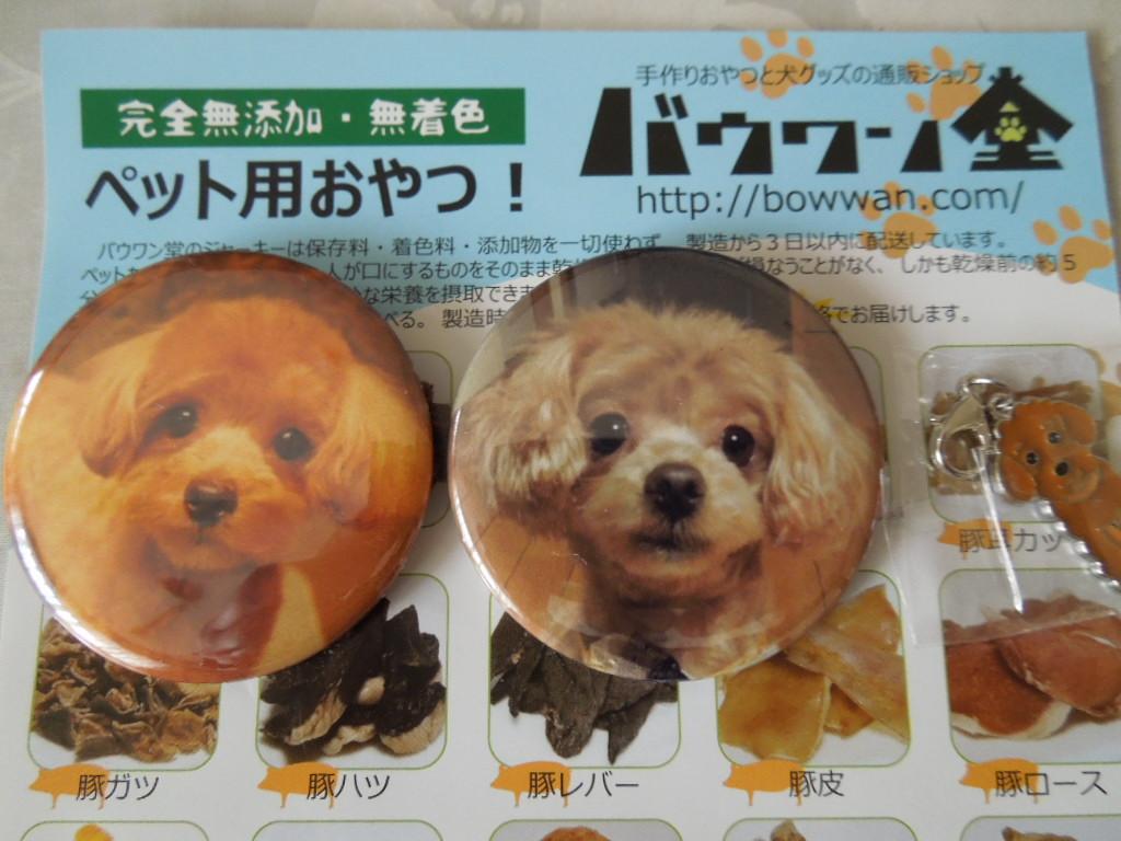f:id:Ikegamiblog_tokyo:20180318214303j:plain
