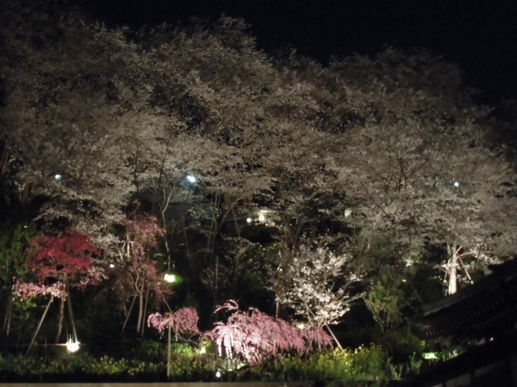 f:id:Ikegamiblog_tokyo:20180328215309j:plain