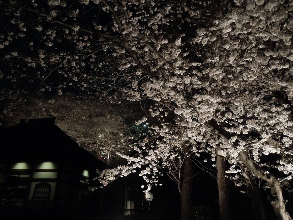 f:id:Ikegamiblog_tokyo:20180328215328j:plain