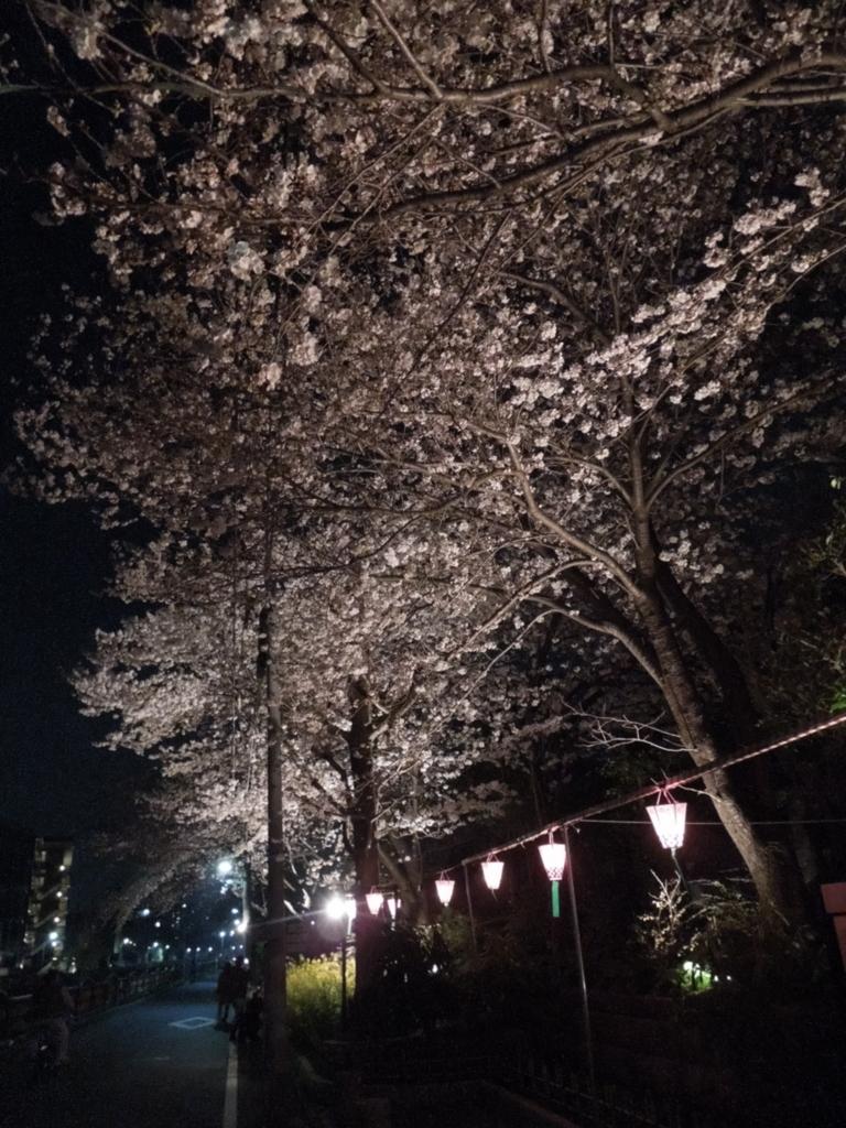 f:id:Ikegamiblog_tokyo:20180328215759j:plain