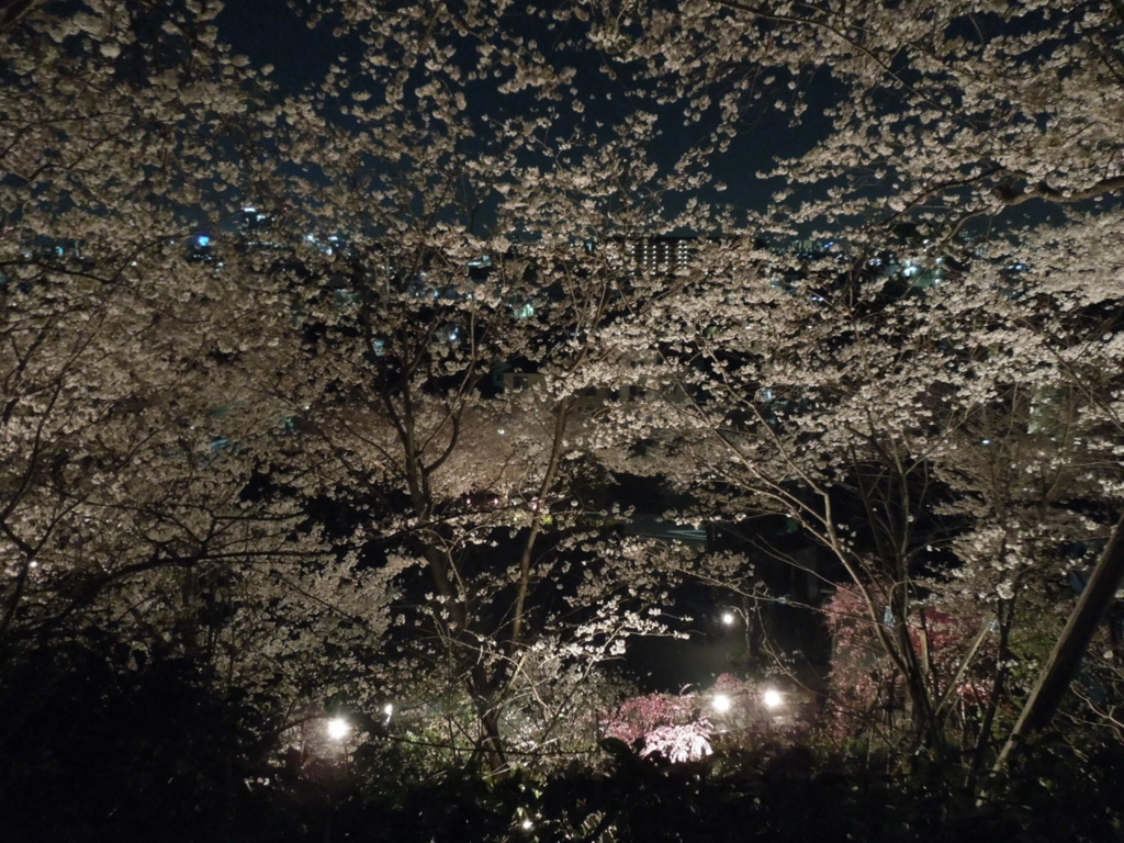 f:id:Ikegamiblog_tokyo:20180328215944j:plain