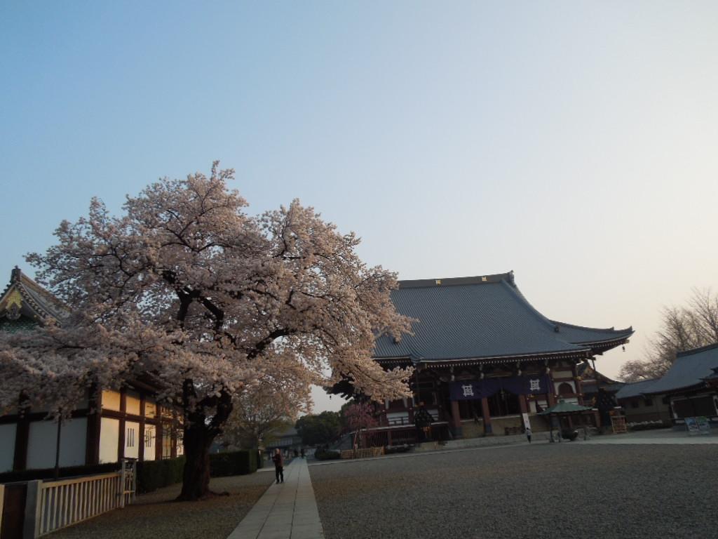 f:id:Ikegamiblog_tokyo:20180328220609j:plain