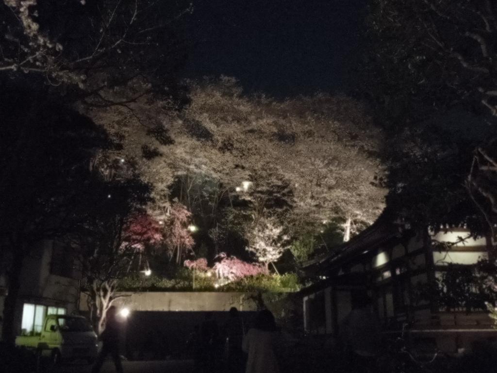 f:id:Ikegamiblog_tokyo:20180329213127j:plain