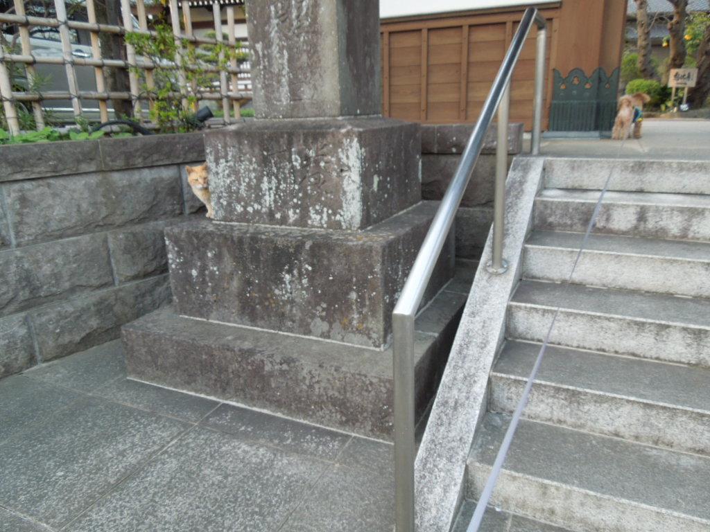 f:id:Ikegamiblog_tokyo:20180401212546j:plain