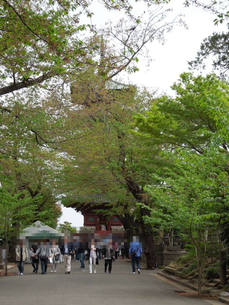f:id:Ikegamiblog_tokyo:20180407150057j:plain