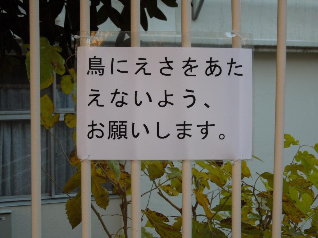 f:id:Ikegamiblog_tokyo:20180407173159j:plain