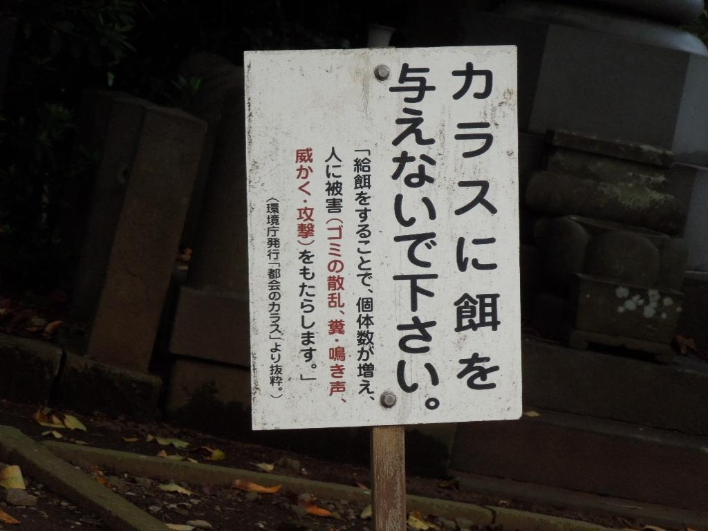 f:id:Ikegamiblog_tokyo:20180407174149j:plain