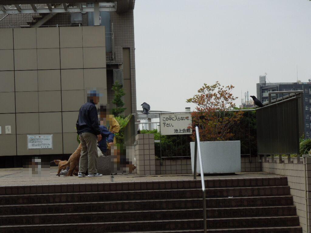 f:id:Ikegamiblog_tokyo:20180415002211j:plain