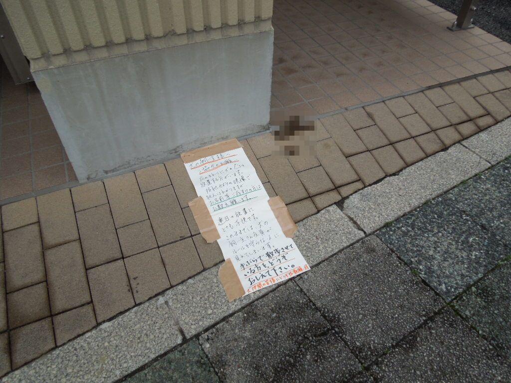 f:id:Ikegamiblog_tokyo:20180421163228j:plain