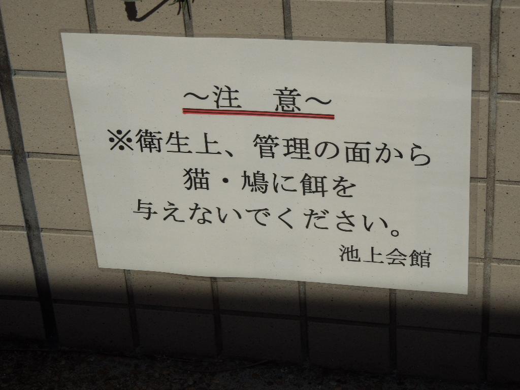 f:id:Ikegamiblog_tokyo:20180421233640j:plain