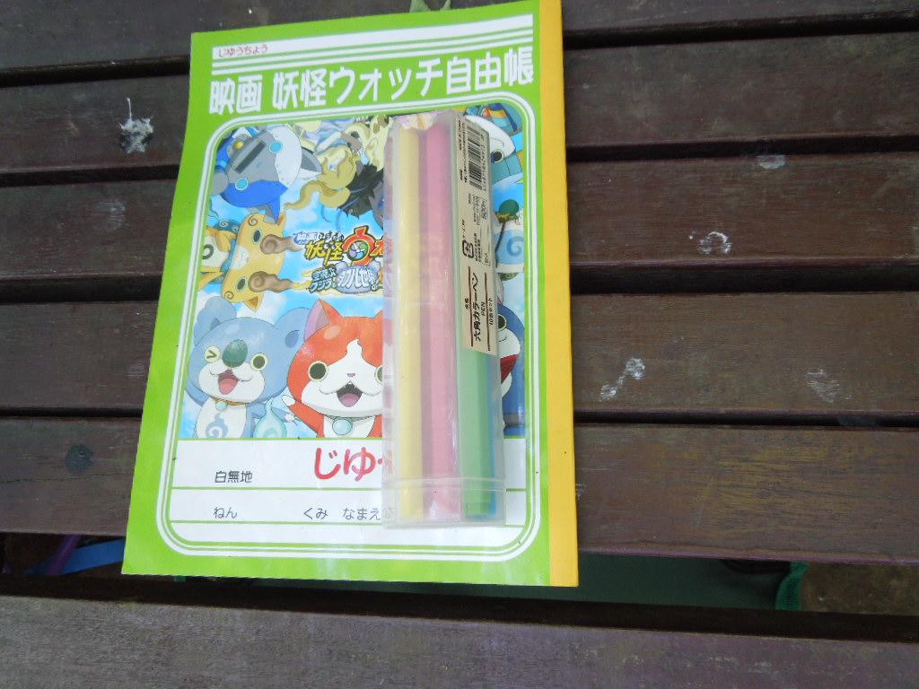 f:id:Ikegamiblog_tokyo:20180527214345j:plain