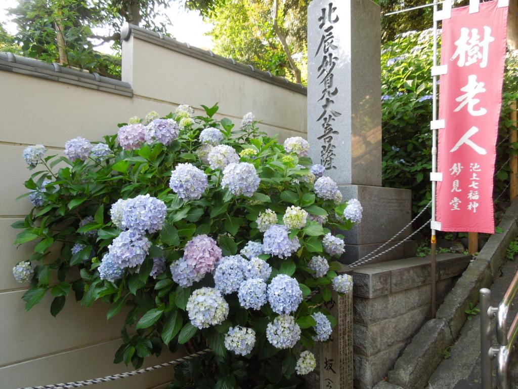 f:id:Ikegamiblog_tokyo:20180602235905j:plain
