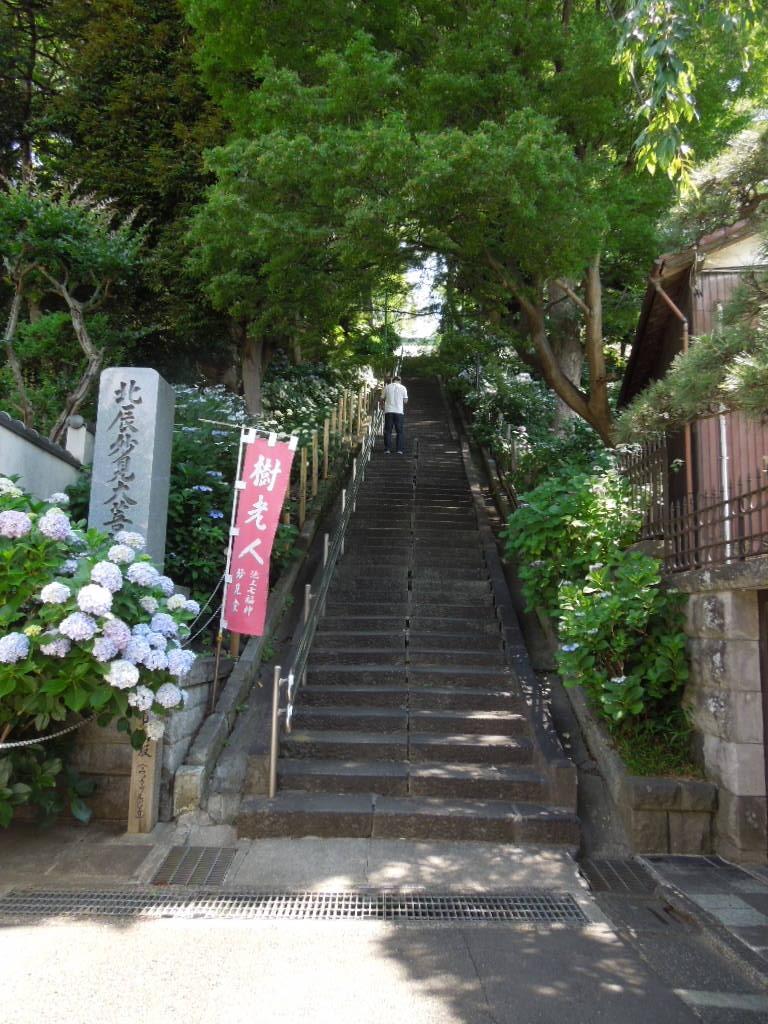 f:id:Ikegamiblog_tokyo:20180603210129j:plain