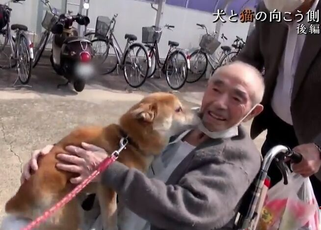 f:id:Ikegamiblog_tokyo:20180610222429j:plain