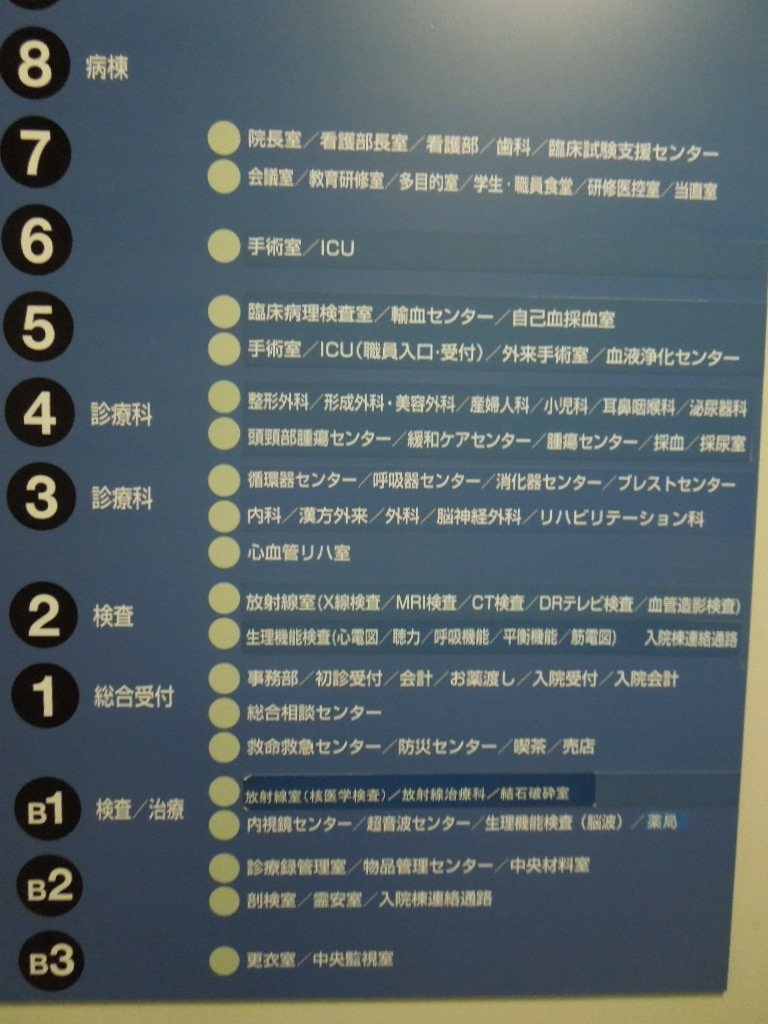 f:id:Ikegamiblog_tokyo:20180623000812j:plain